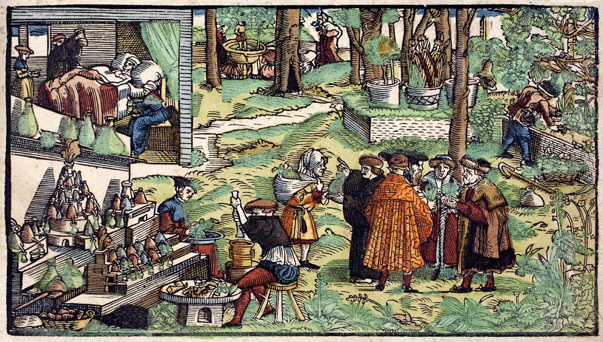 Botanicon. plantarum historiae.<br /><br />