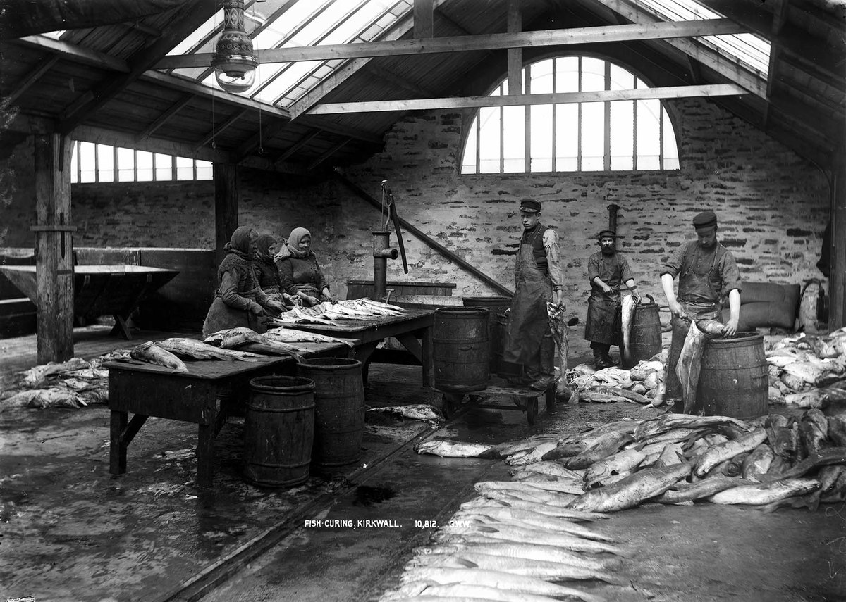 Fish Curing Kirkwall MS 3792 C04425.jpg