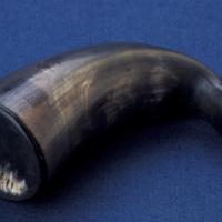 Snuff Horn